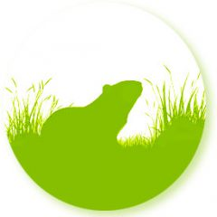cropped-logo-meerschweinchenwiese-Kopie-1.jpg