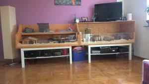 gehege-wohnzimmer