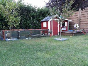 meerschweinchen-kinderspielhaus